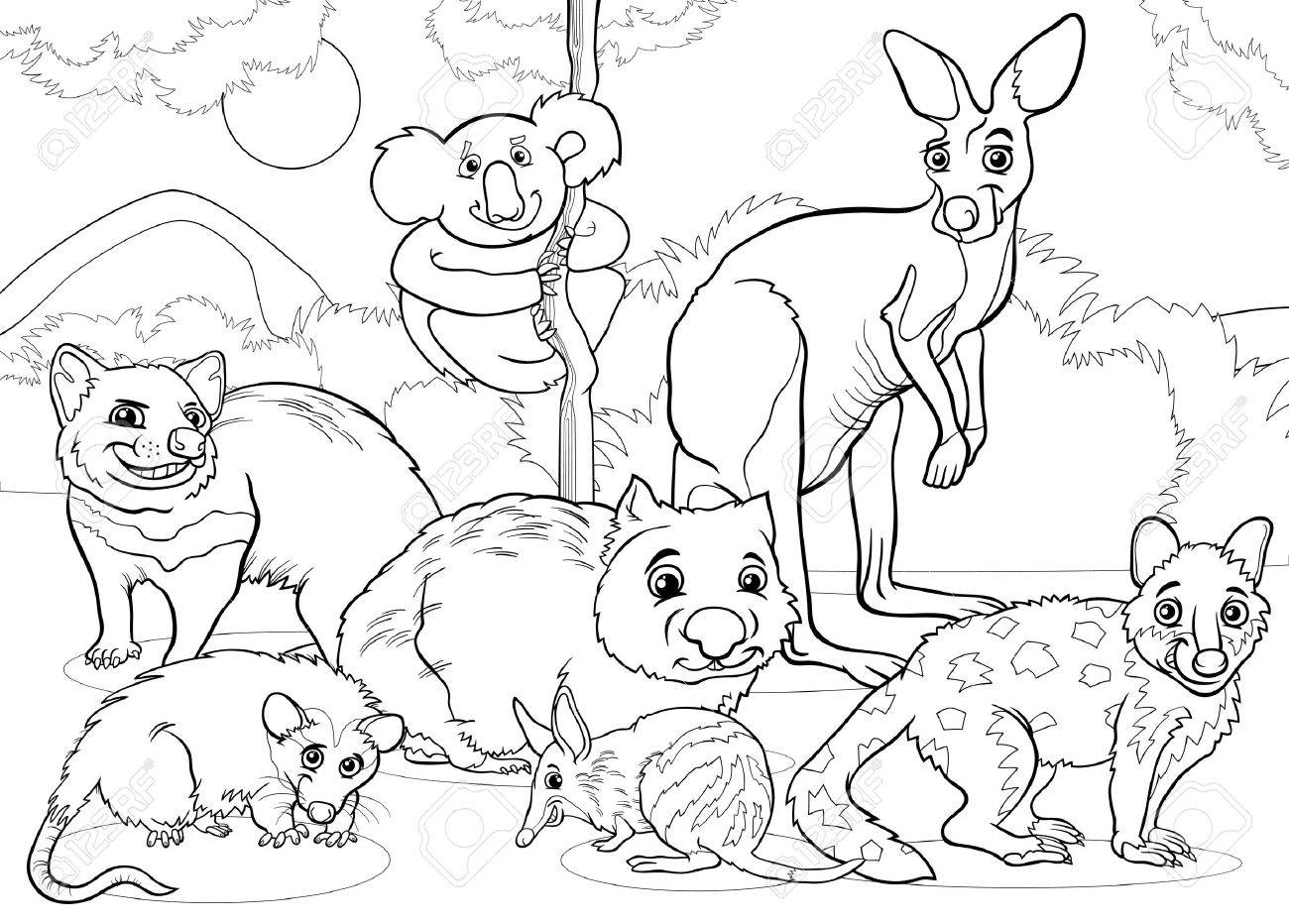 Realistic Wild Animal Coloring Pages - 2018 images & pictures ...