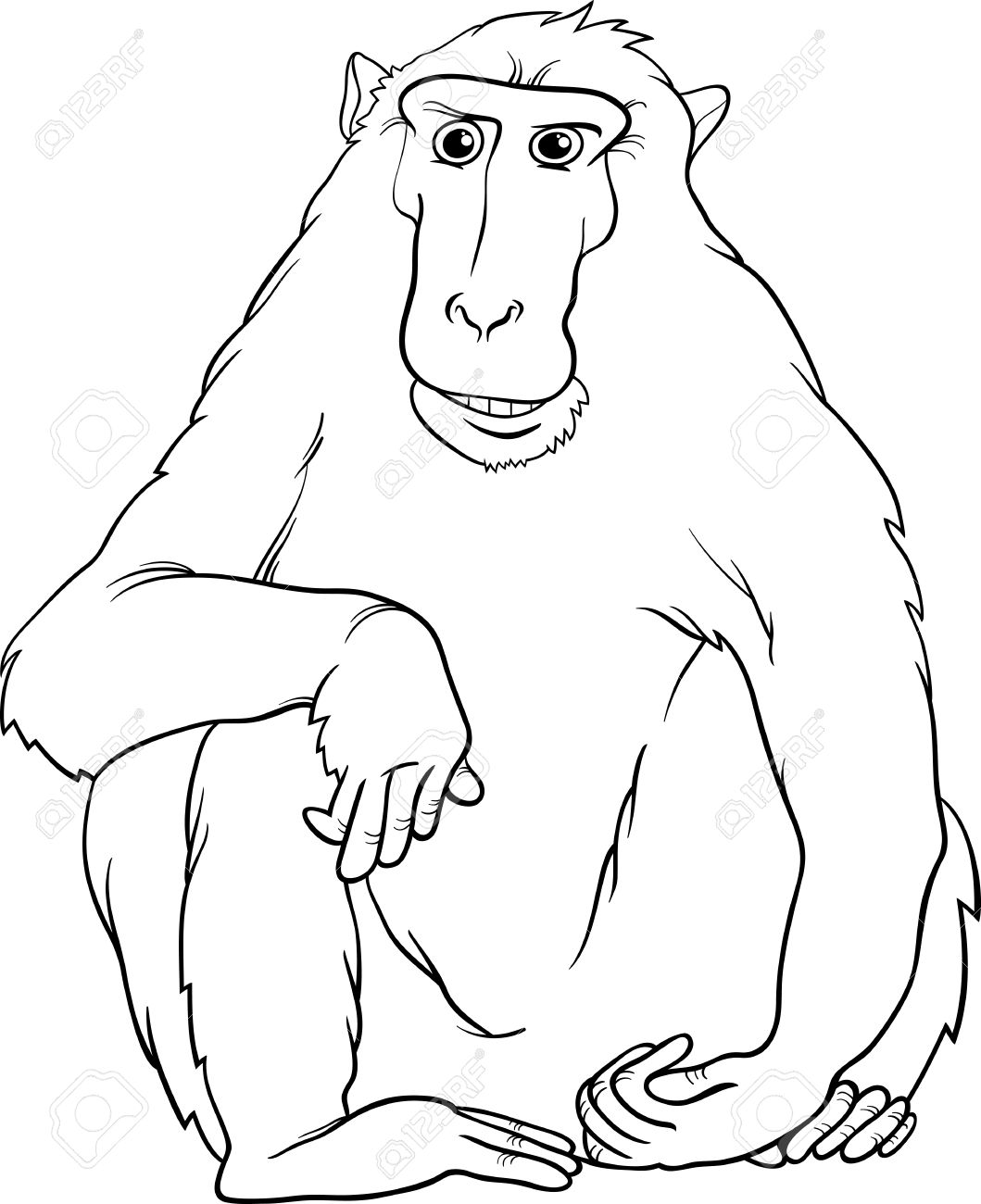 Black And White Cartoon Illustration Of Funny Macaque Monkey Primate Animal For Coloring Book Stock Vector