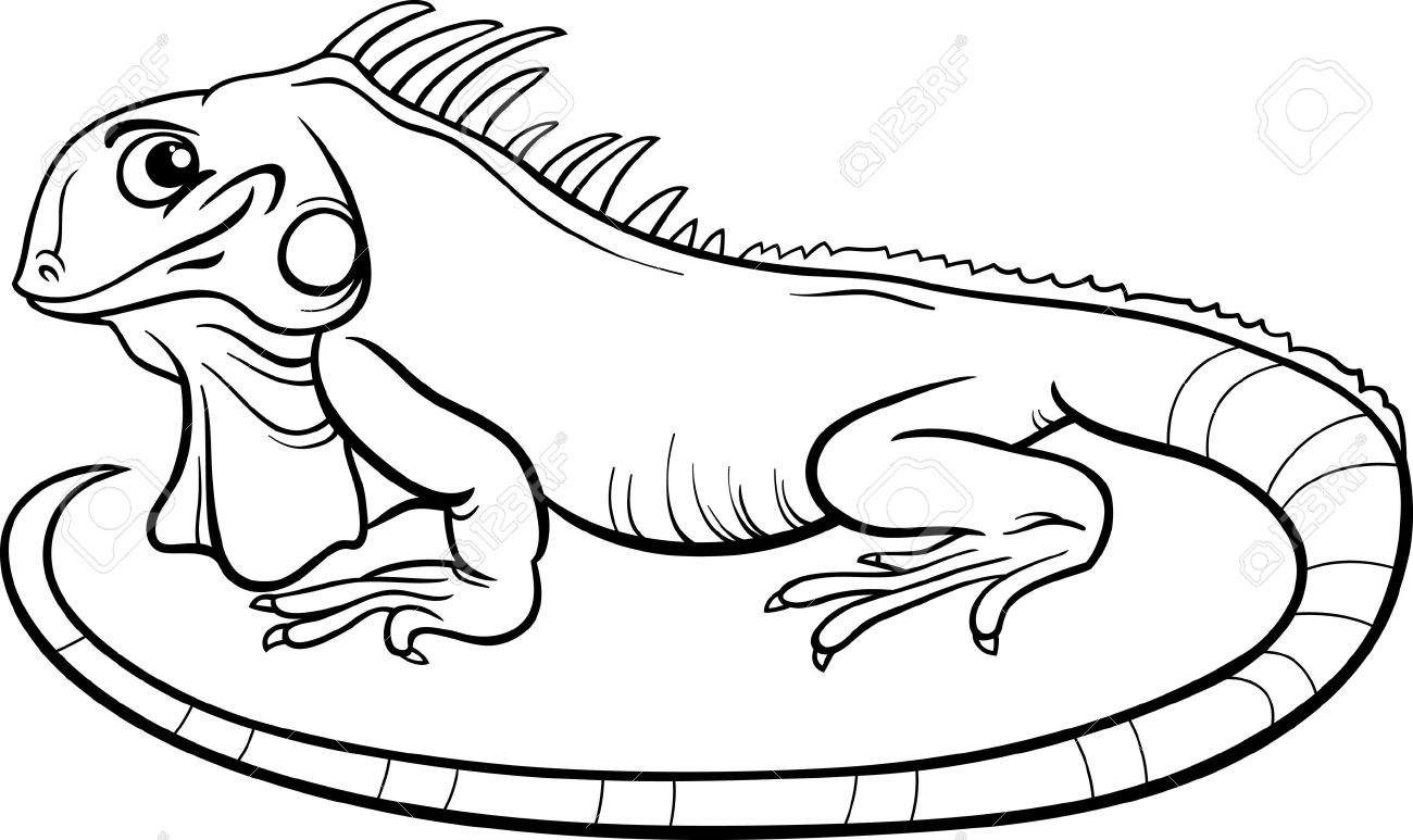 Black And White Cartoon Illustration Of Funny Iguana Lizard ... for Clipart Lizard Black And White  197uhy
