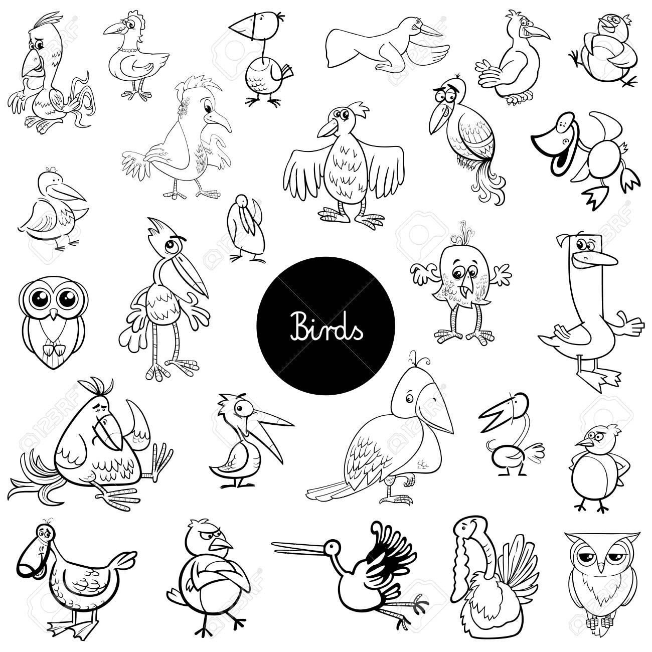 Ilustración De Dibujos Animados Blanco Y Negro De Aves Animales Colección Grande Libro De Dibujo Para Colorear