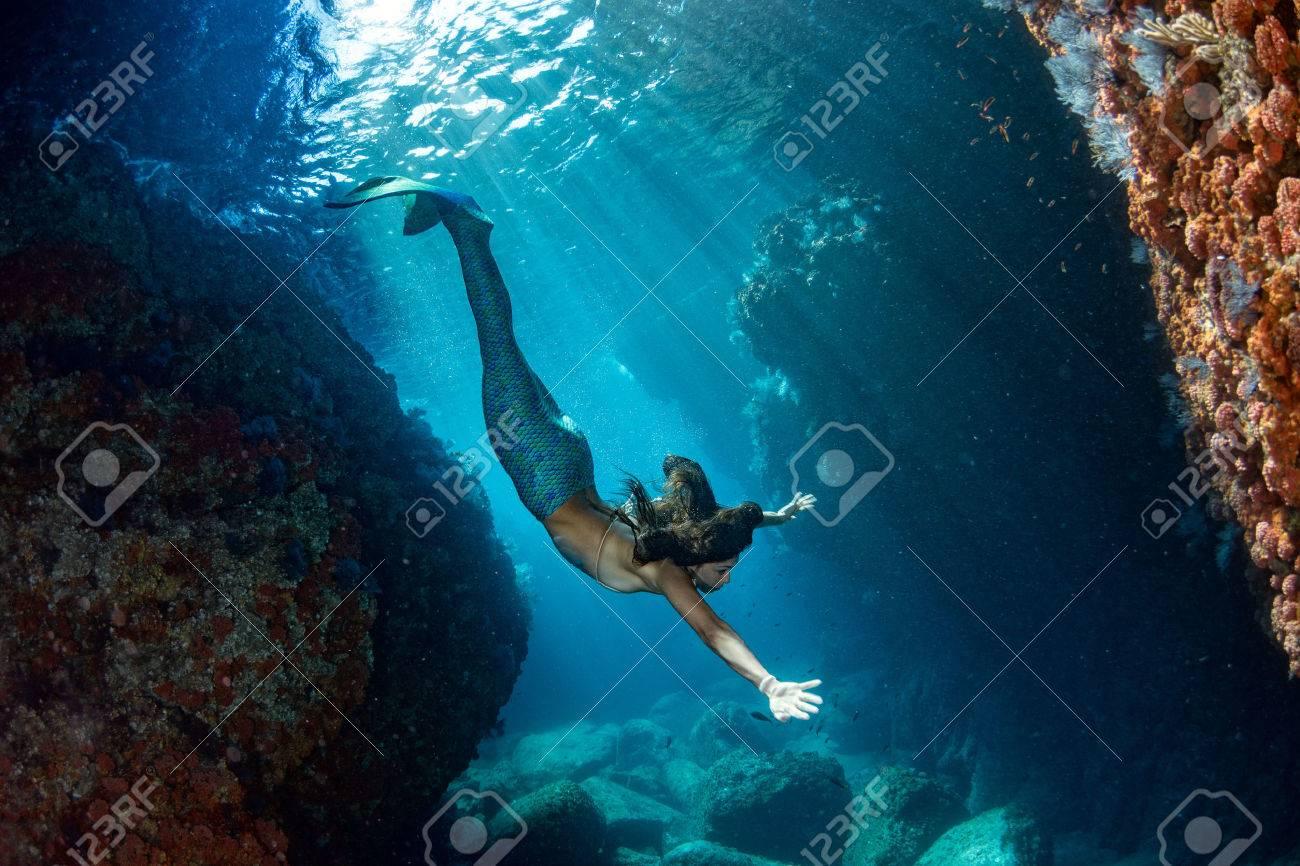 Mermaid Swimming