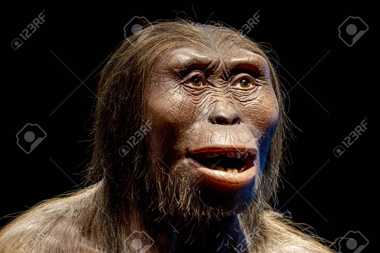 lucy neanderthal cro-magnon female face isolated on black - 125891649