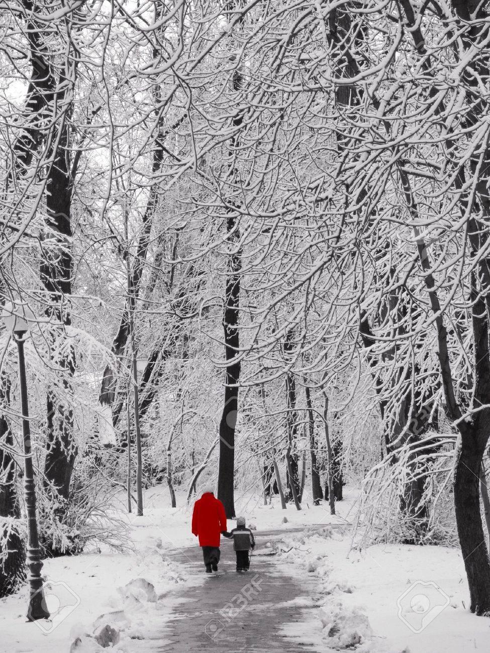 Walking in a park in winter Stock Photo - 307447