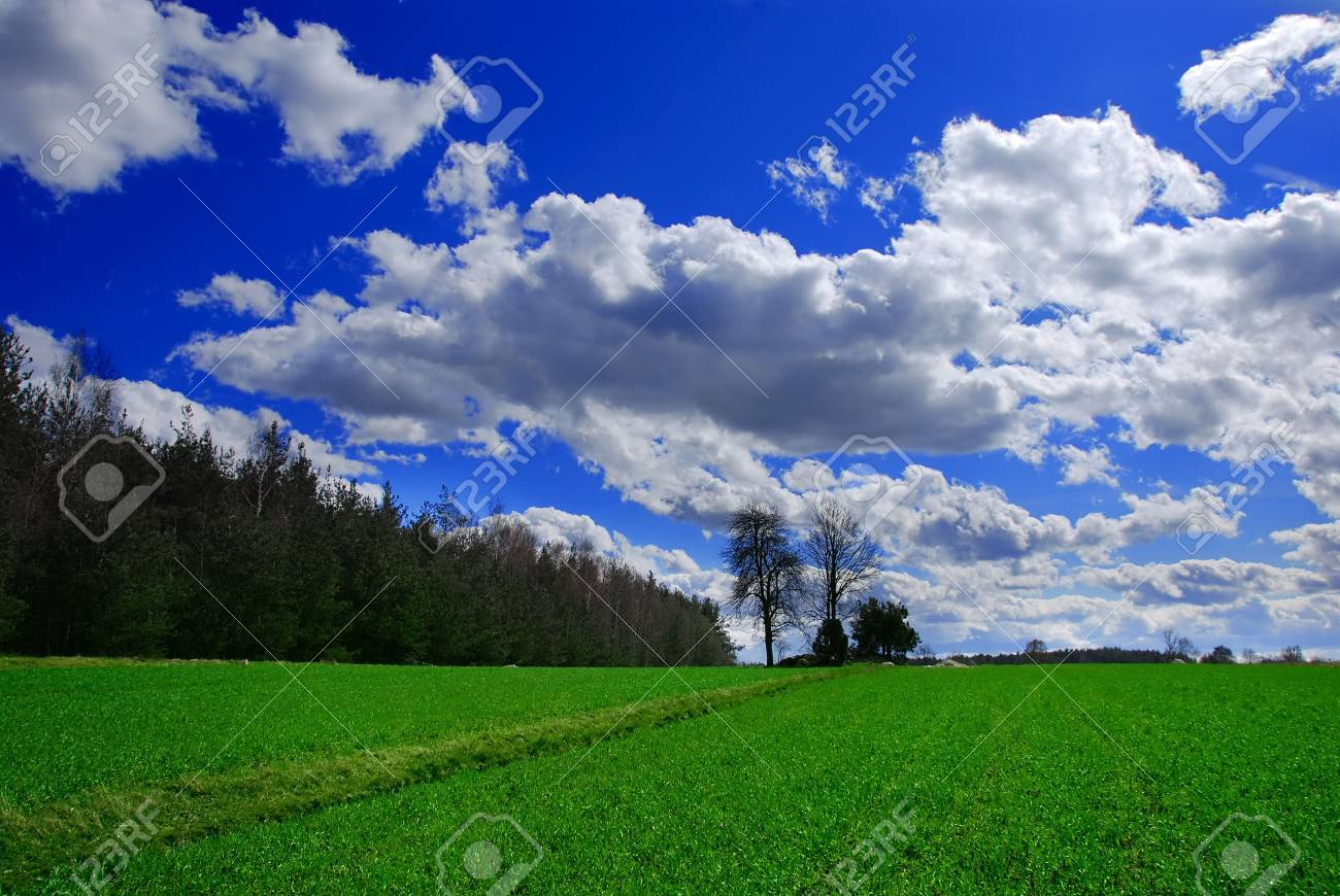 Beautiful spring landscape Stock Photo - 855152