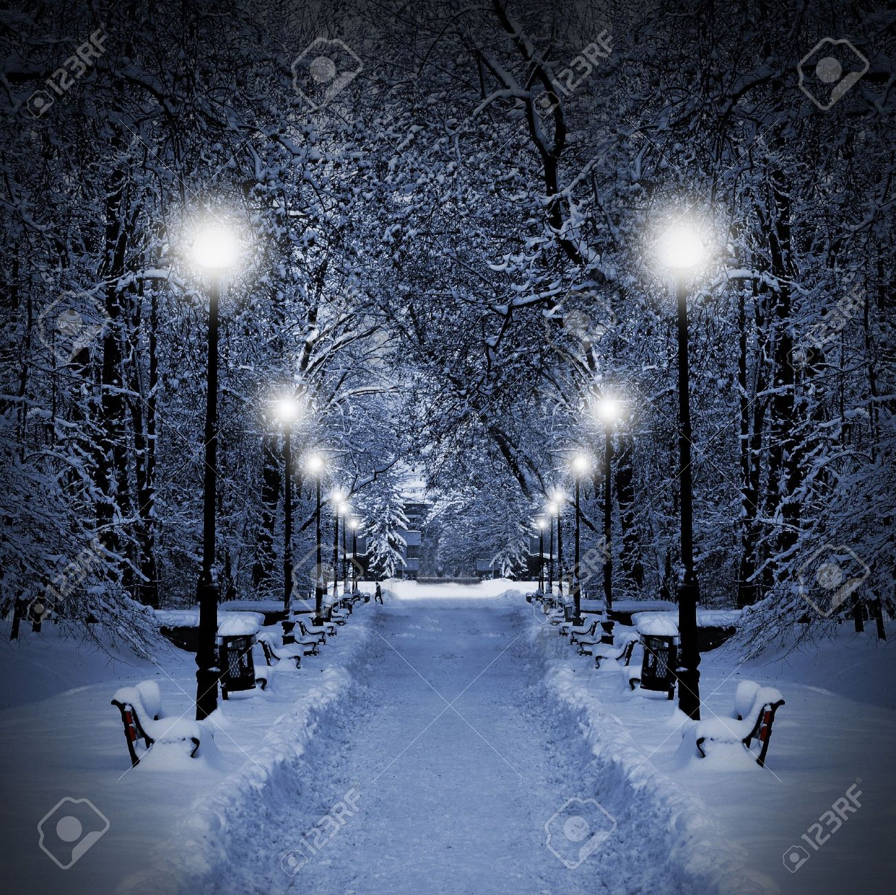 Winter park in the evening covered with snow with a row of lamps Stock Photo - 10769499
