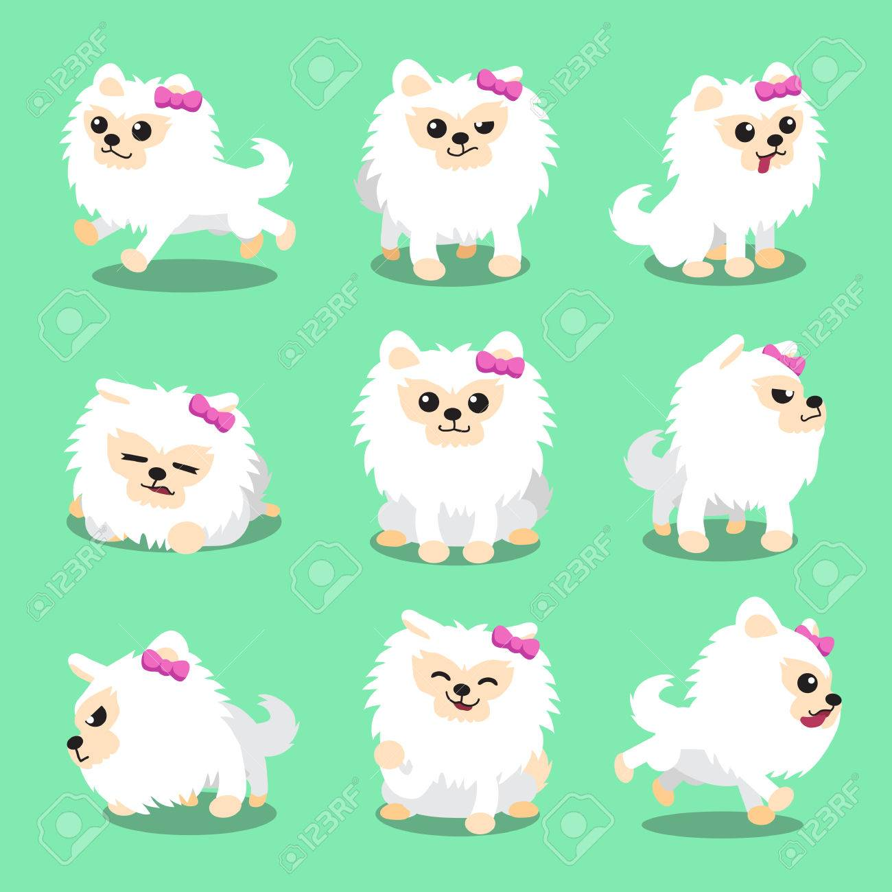 Cartoon Character White Pomeranian Dog Poses Royalty Free Cliparts Vectors And Stock Illustration Image 47275166