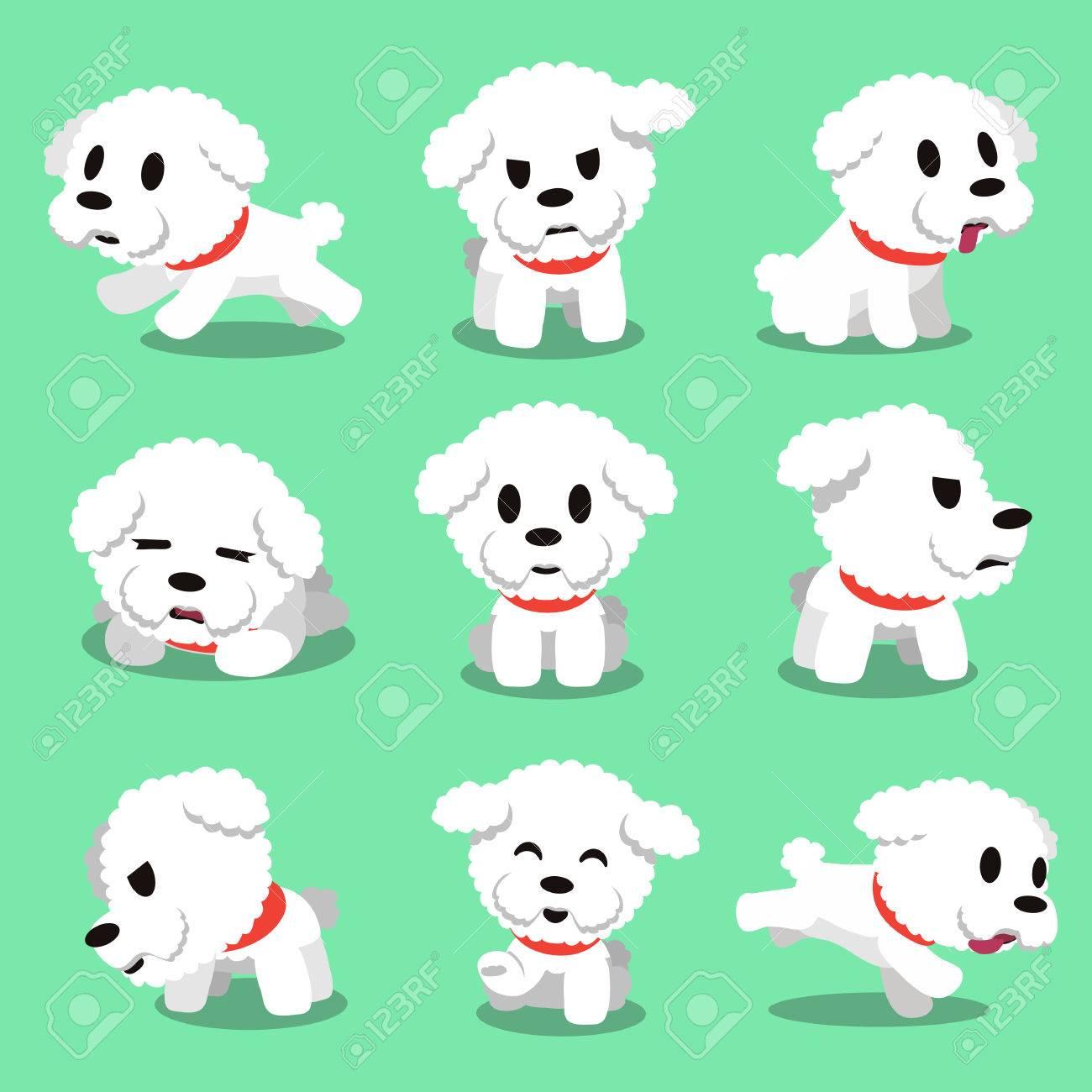 Cartoon character bichon frise dog poses - 50264103
