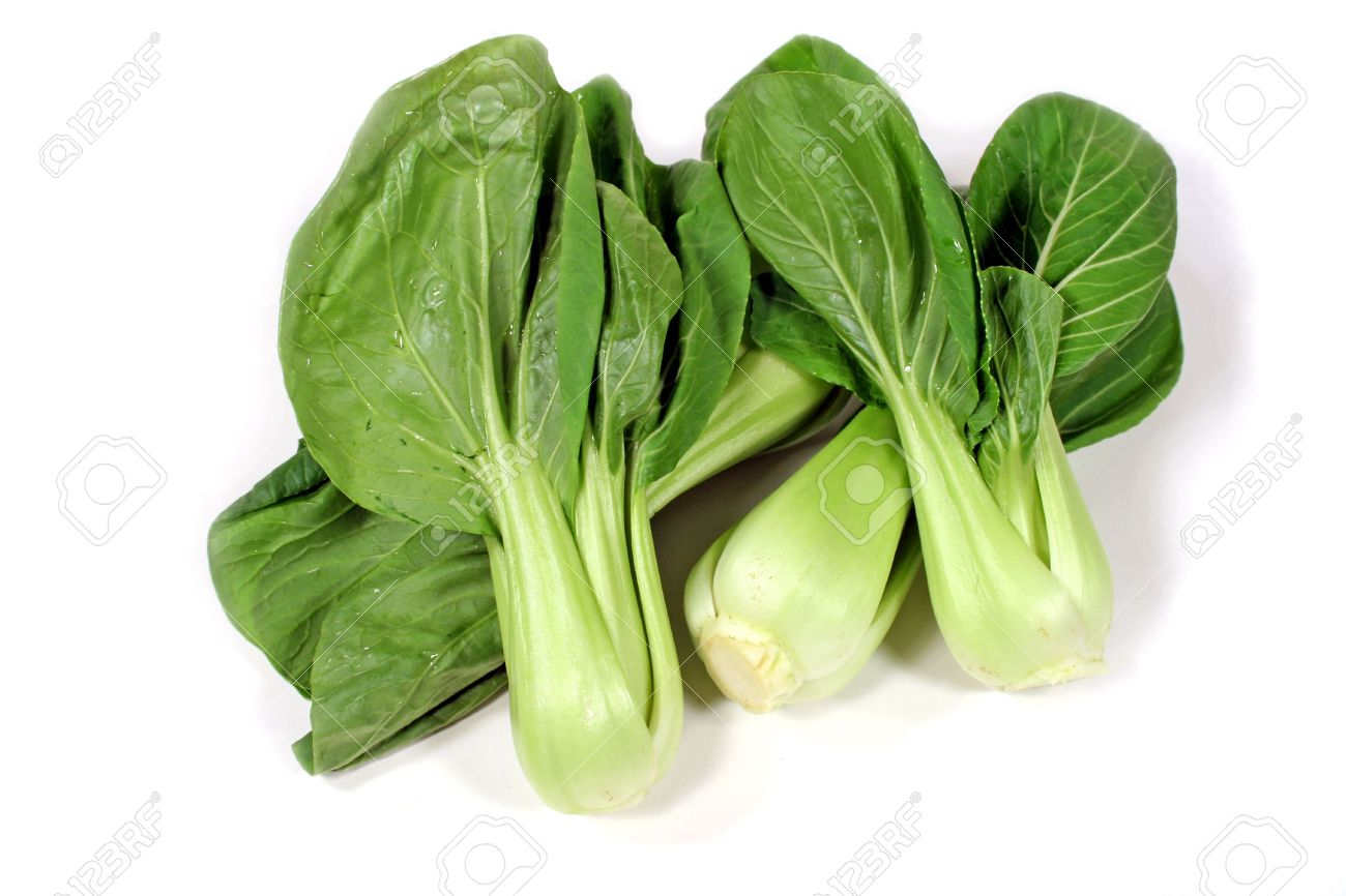 Delicious Chinese Green Leaf Vegetable Bok Choy Stock Photo