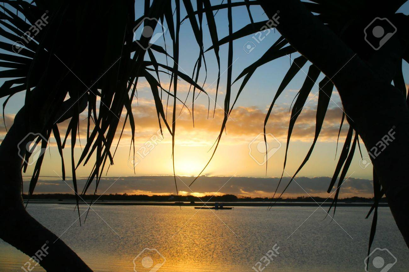 Sunrise through the silhouette of two pandanus trees. Stock Photo - 2862191