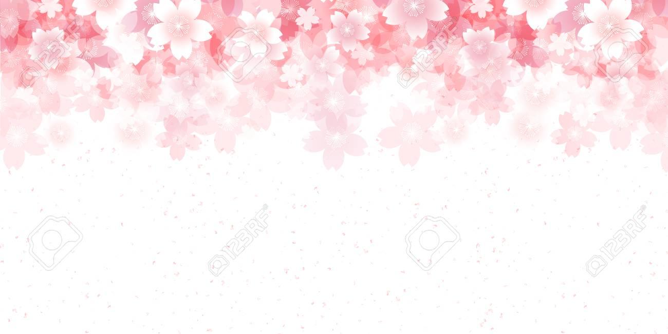 Cherry spring flower background - 69018616