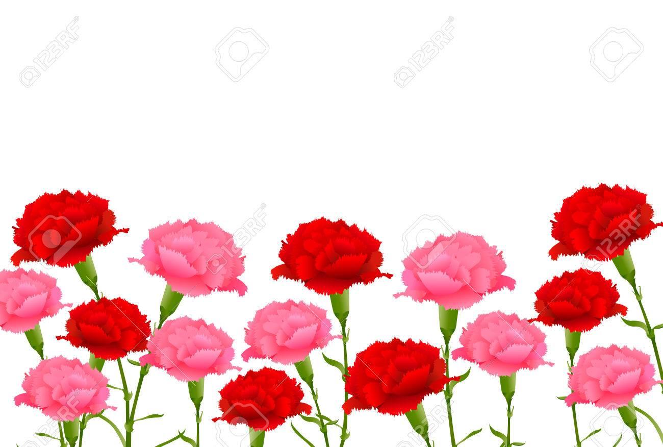 Mother's Day Carnation Spring background - 74688796