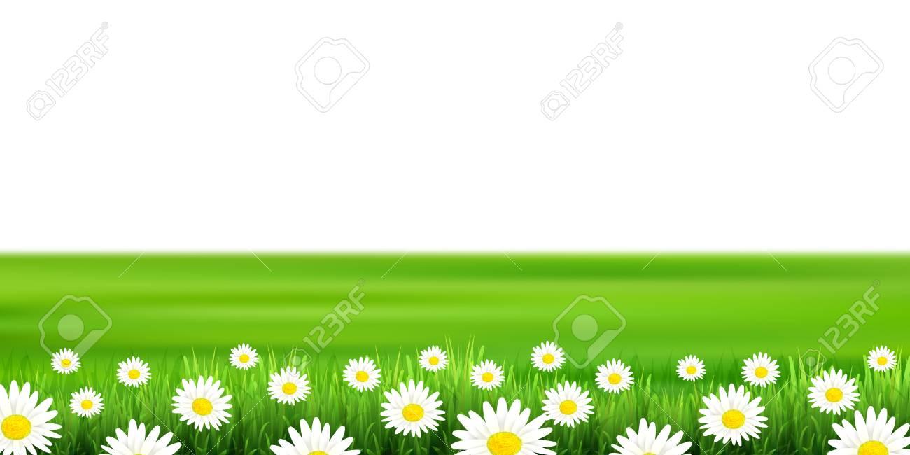 Flower plains landscape background - 96106222
