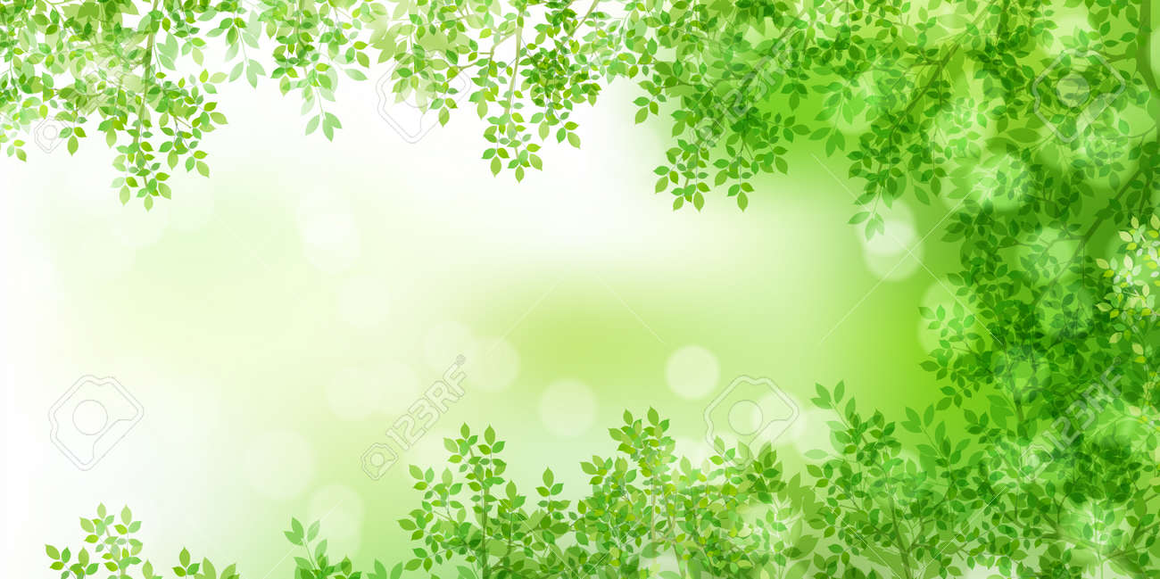 Fresh green leaves spring background - 165396870