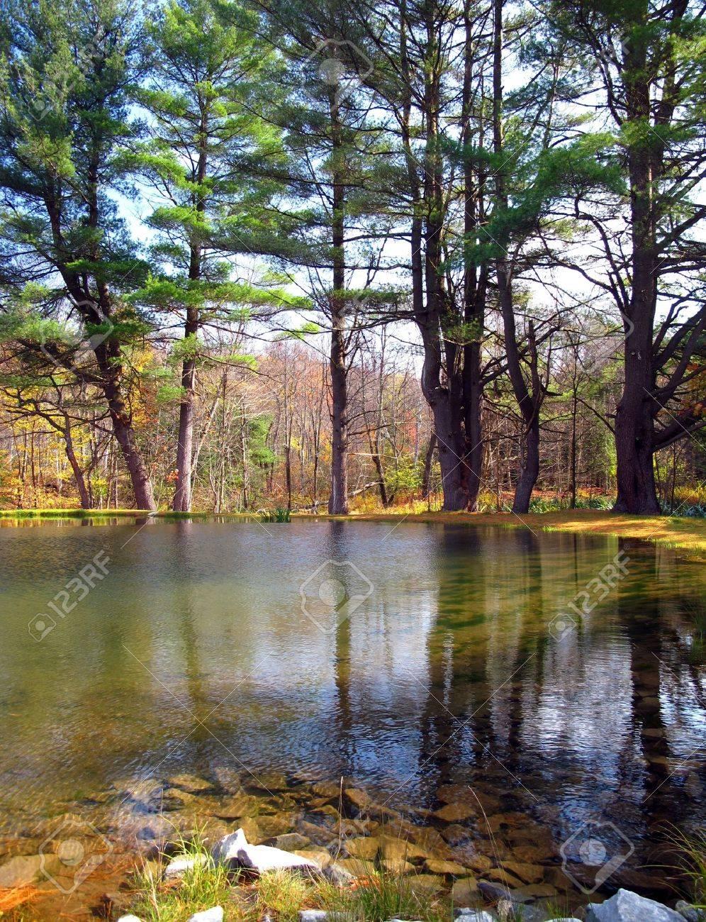 Still Pond Reflecting Autumn Trees Stock Photo - 10400675