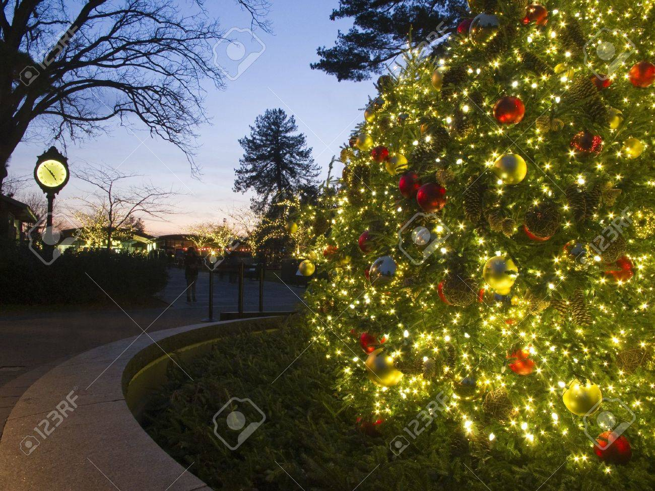 Outdoor Christmas Tree at Dusk, lit with bright colorful lights and Clock Stand in background Stock Photo - 12628834