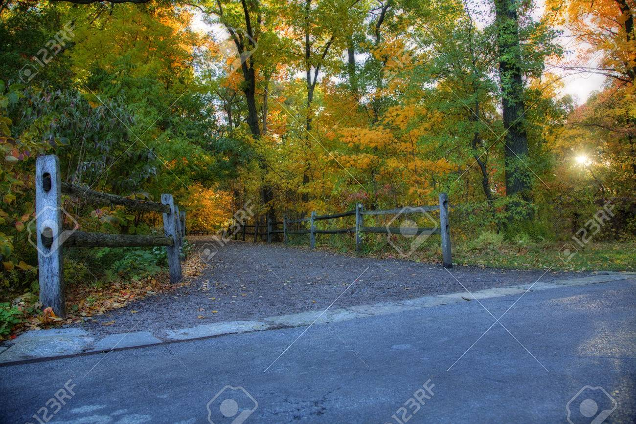 Forest Trail in Autumn. Fall foliage colors Stock Photo - 48202530