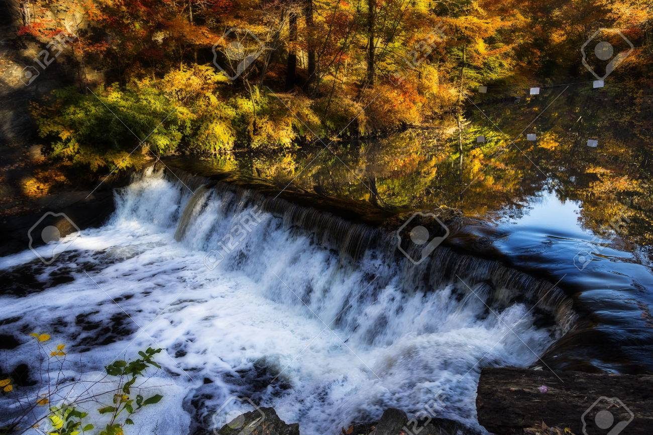 Creek and waterfall surrounded by trees in fall foliage. Filter applied for dramatic effect Stock Photo - 49114602