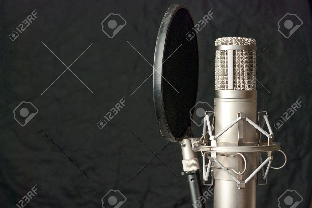 Close-up of a condenser microphone. - 15206458