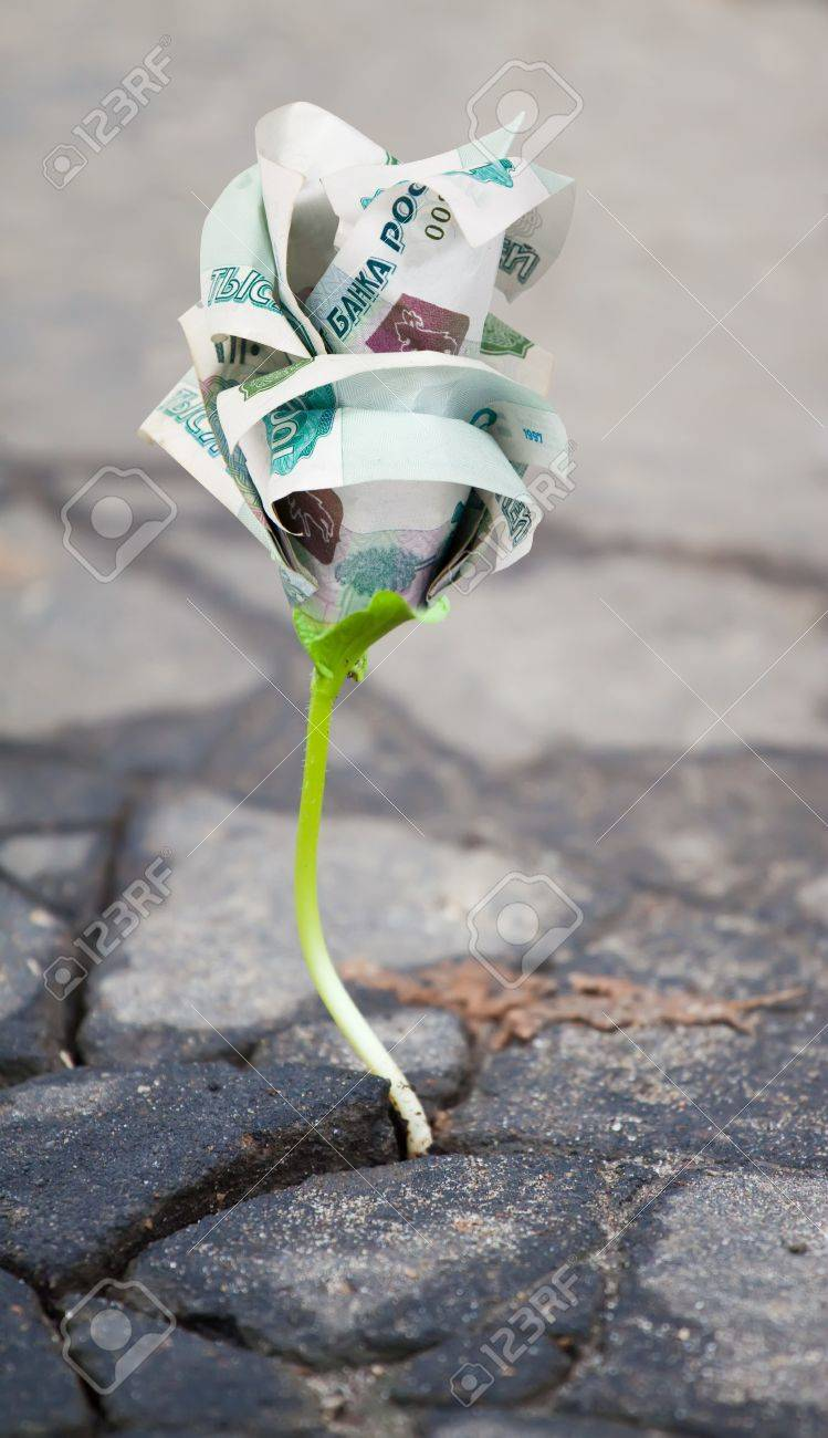 Young money sprout makes the way through asphalt on city road Stock Photo - 8334008