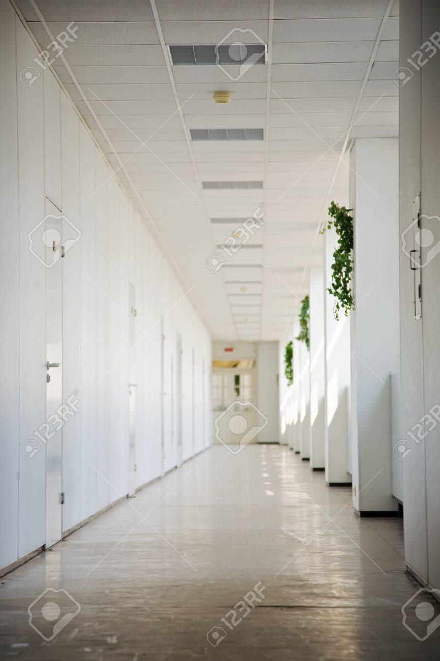 office corridor with doors  in business center Stock Photo - 8383645