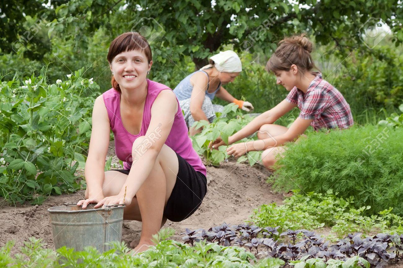 Three women working in her vegetable garden Stock Photo - 9854784