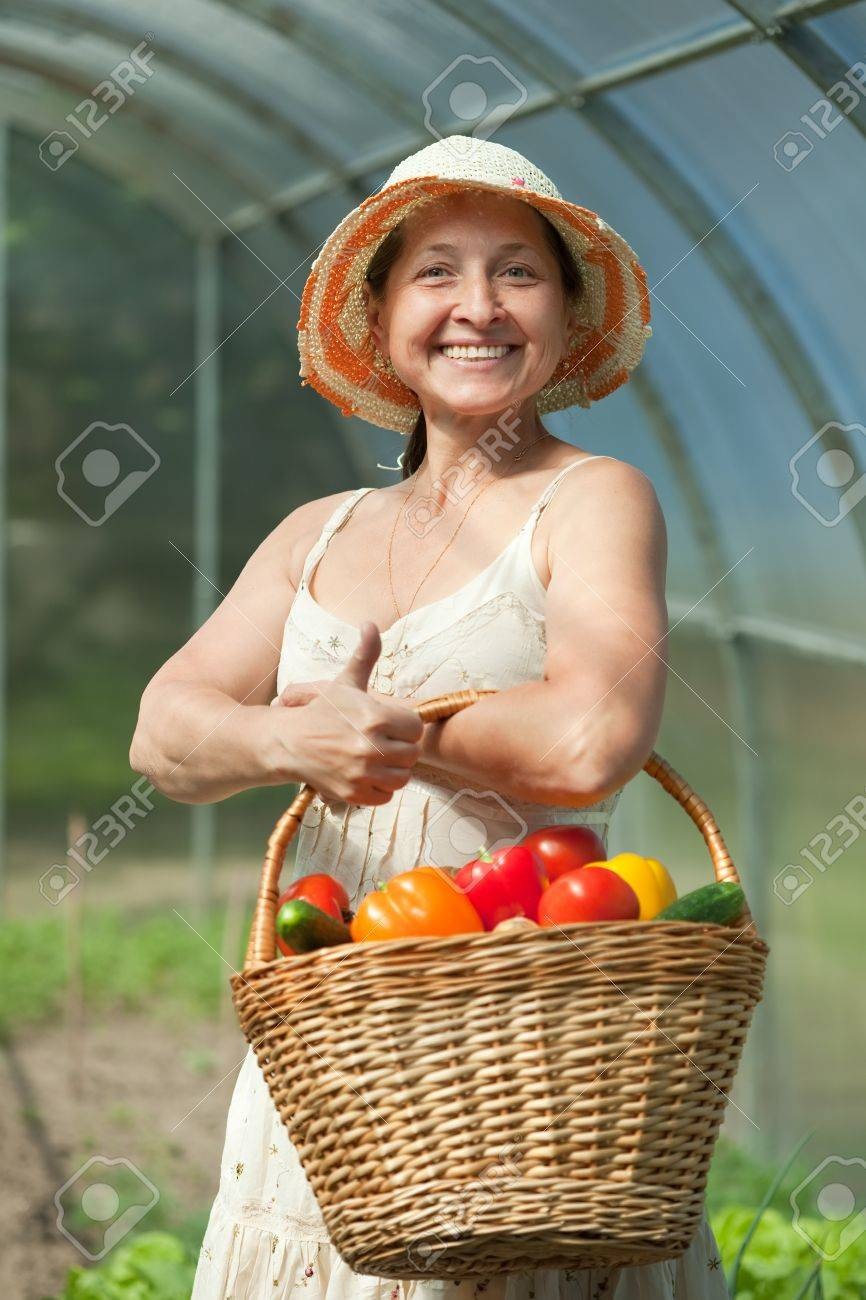 mature woman with basket of harvested vegetables in greenhouse Stock Photo - 10196350