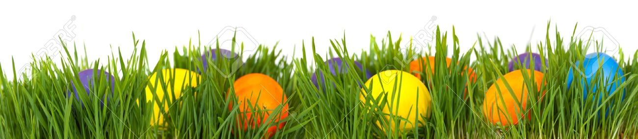 Easter border. Easter eggs in green grass over white background Stock Photo - 10509820
