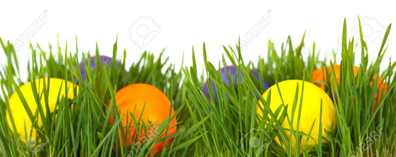 Easter Border Eggs In Green Grass Over White Background Stock Photo