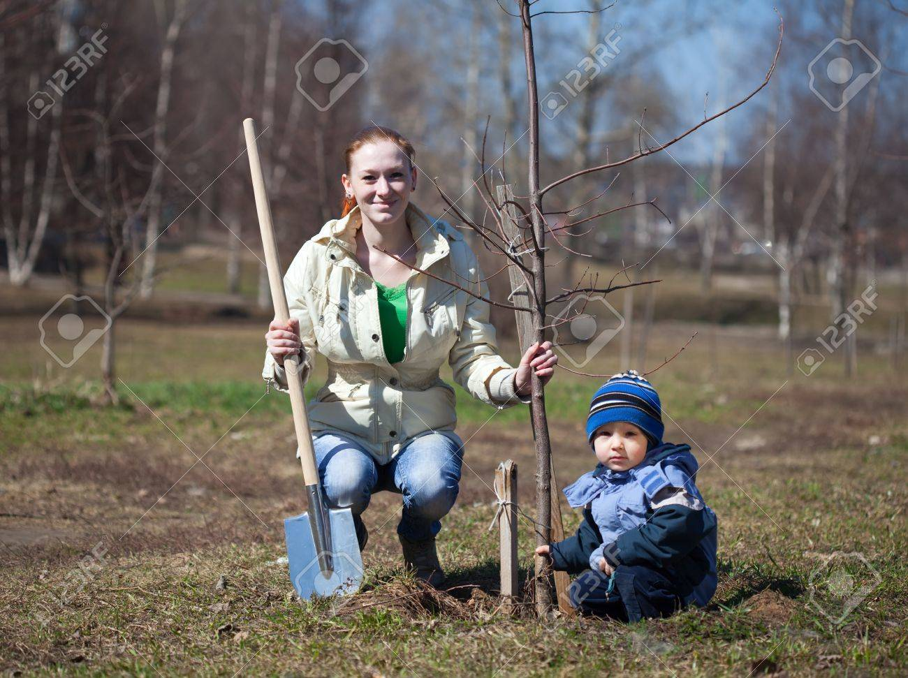 mother and son with spade outdoors planting  tree Stock Photo - 12385746