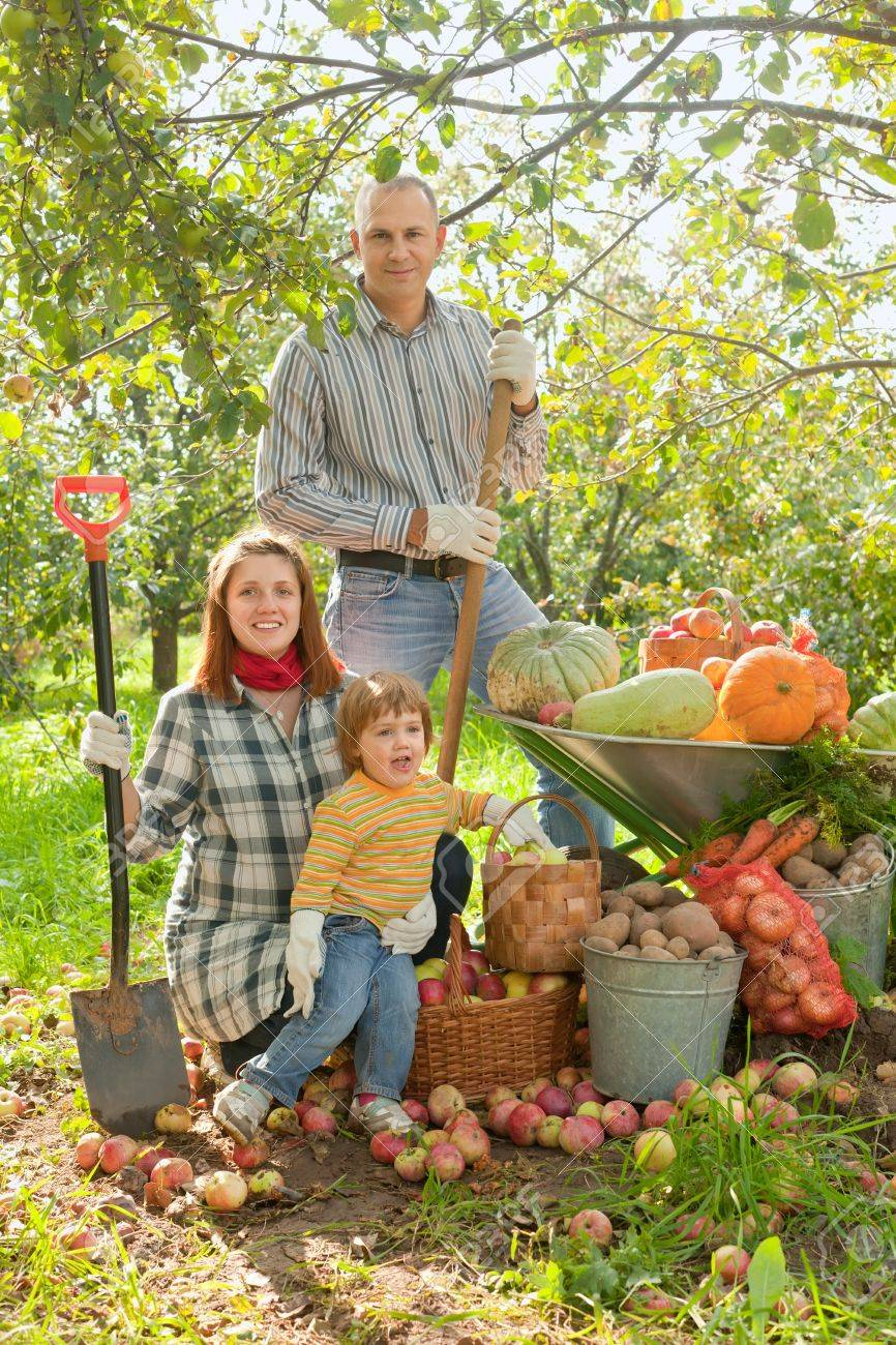 Happy  family with vegetables harvest in garden Stock Photo - 15316679
