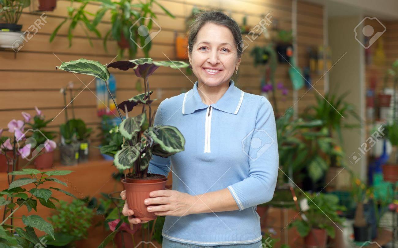 Happy mature woman chooses Calathea in pot at flower shop Stock Photo - 16970097