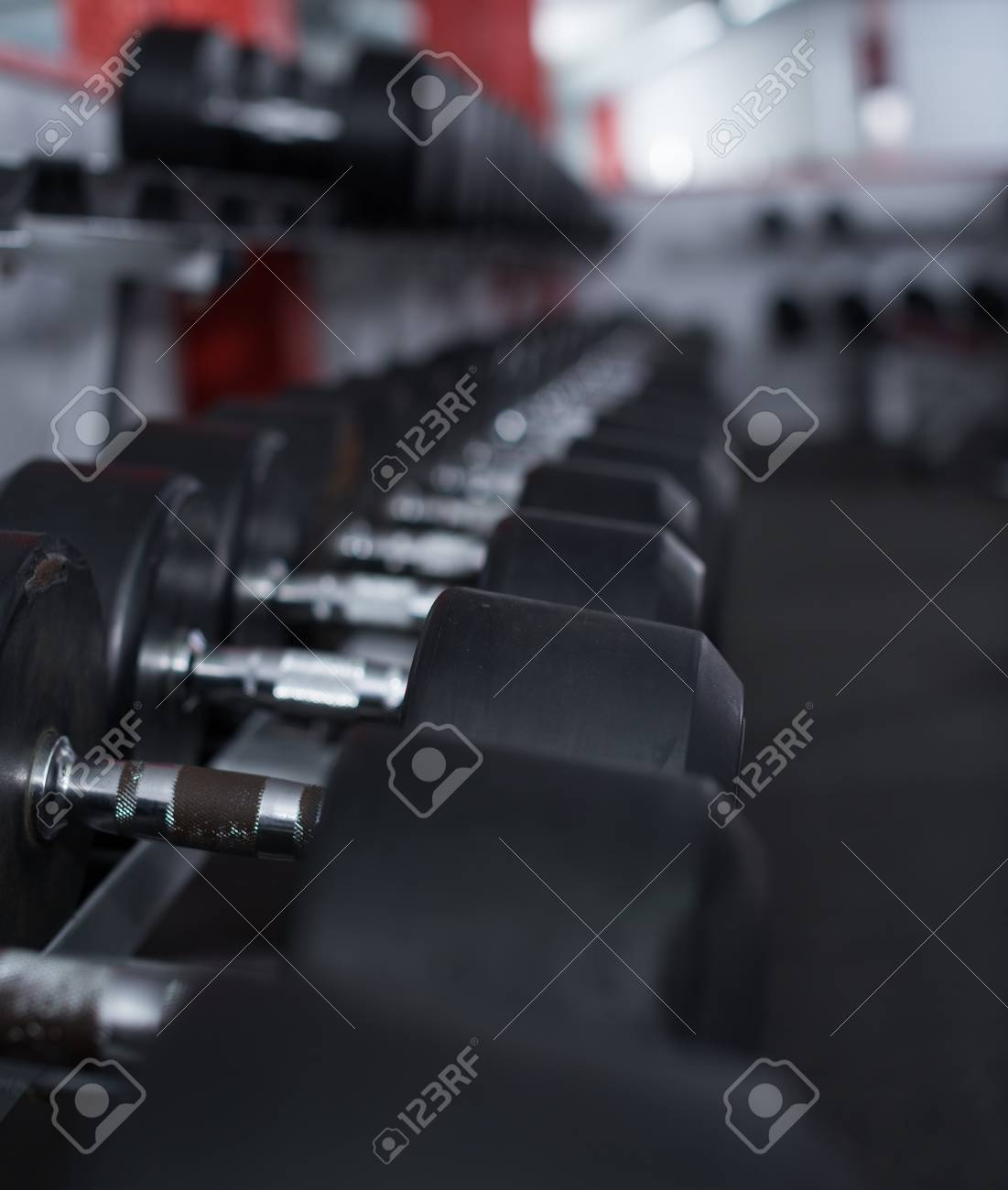 Rows of dumbbells for weight training in gym - 97100455