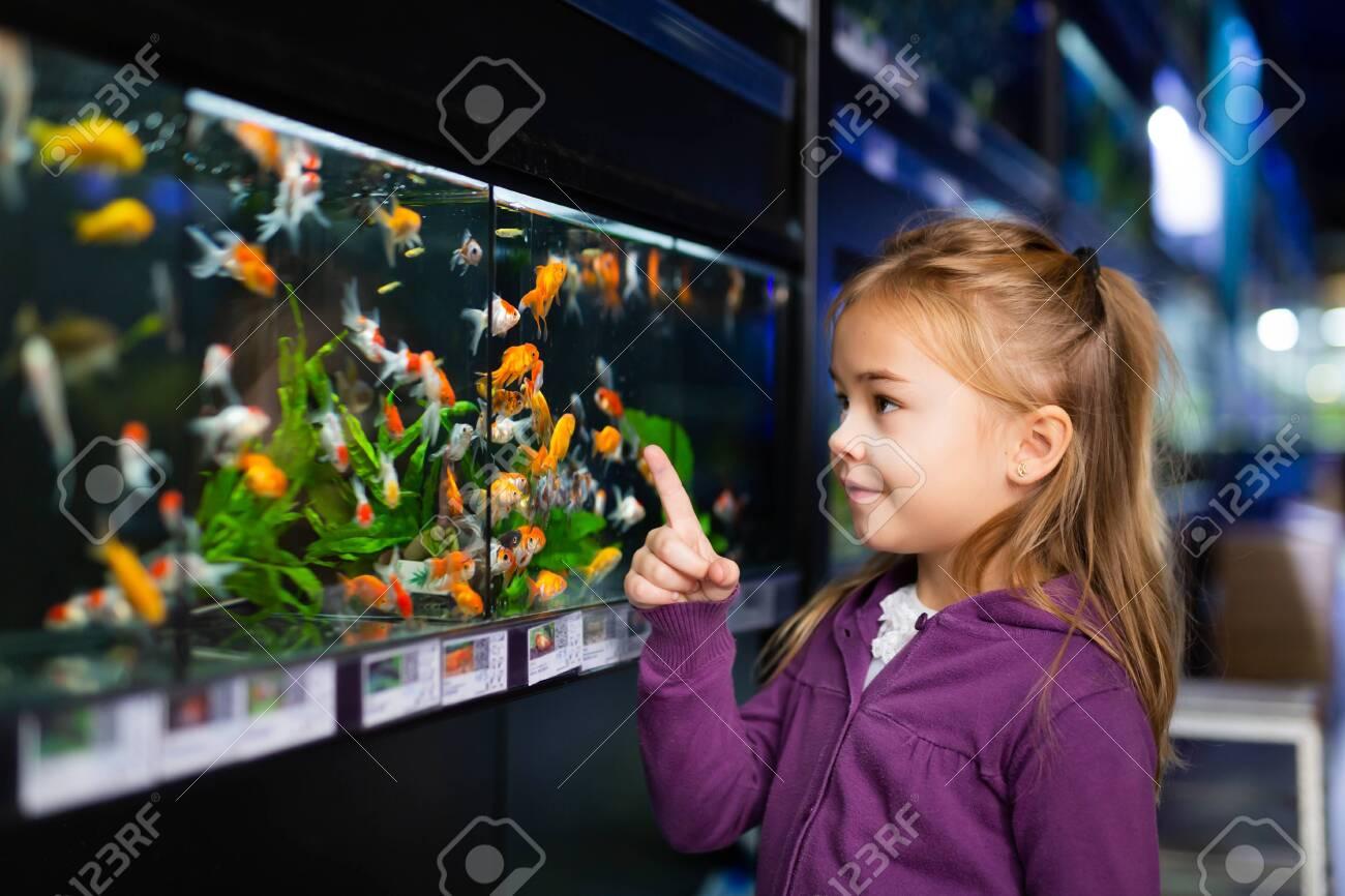 Girl looking at aquarium fish in pet shop - 155352730