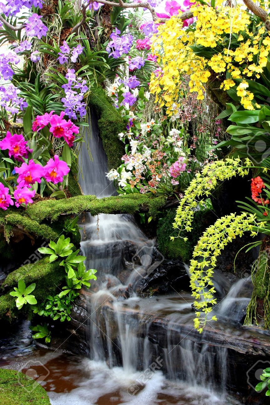Water fall and flower in Thailand Stock Photo - 7383506