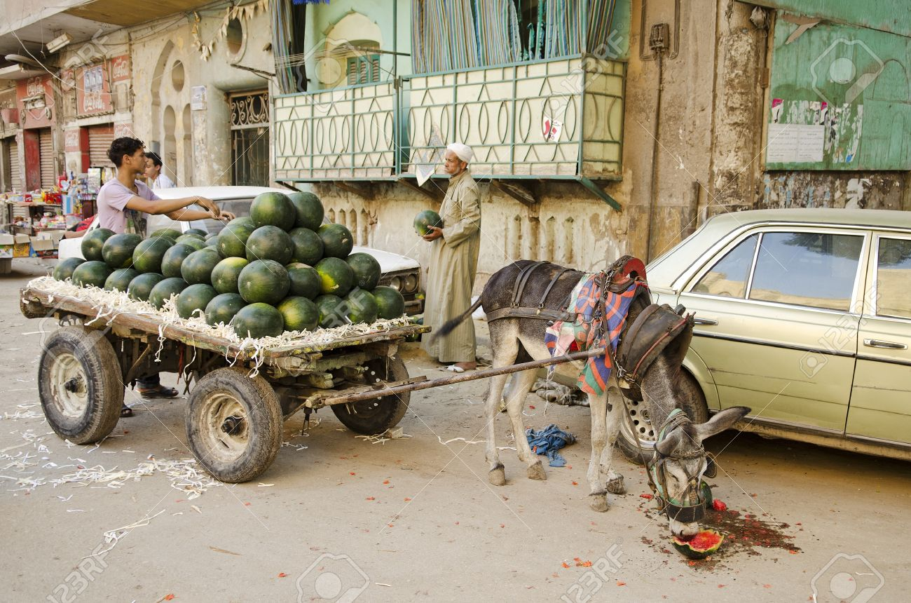 Street Scene With Watermelon Seller In Cairo Old Town Egypt Stock ...