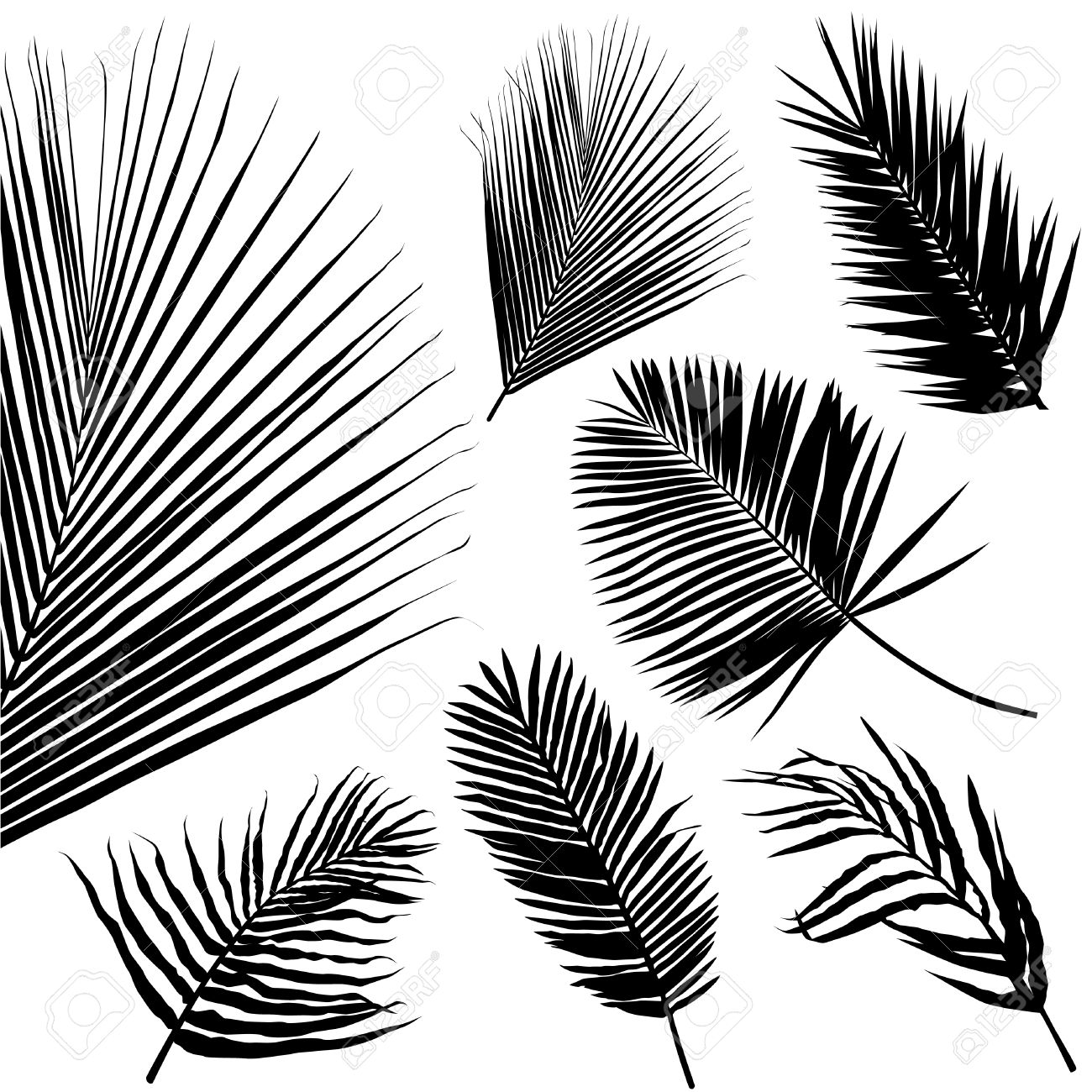 palm leaf seamless pattern Stock Vector - 8355772