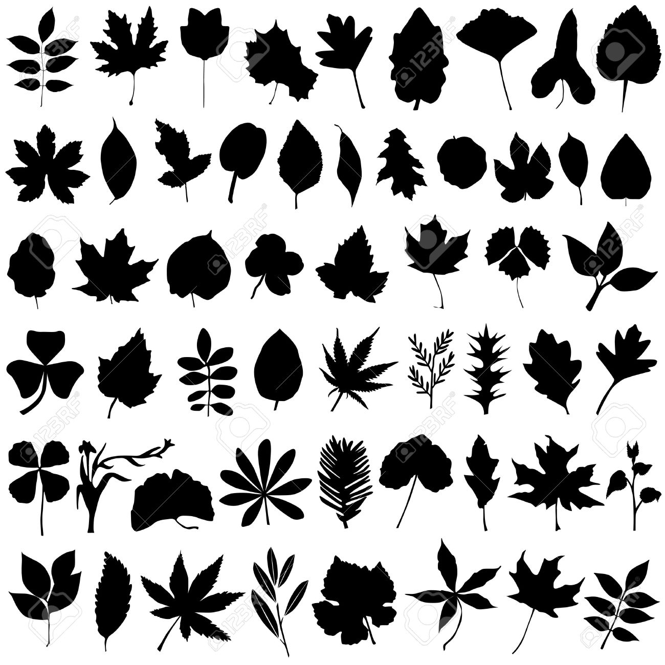 floral and leaf vector Stock Vector - 8498185