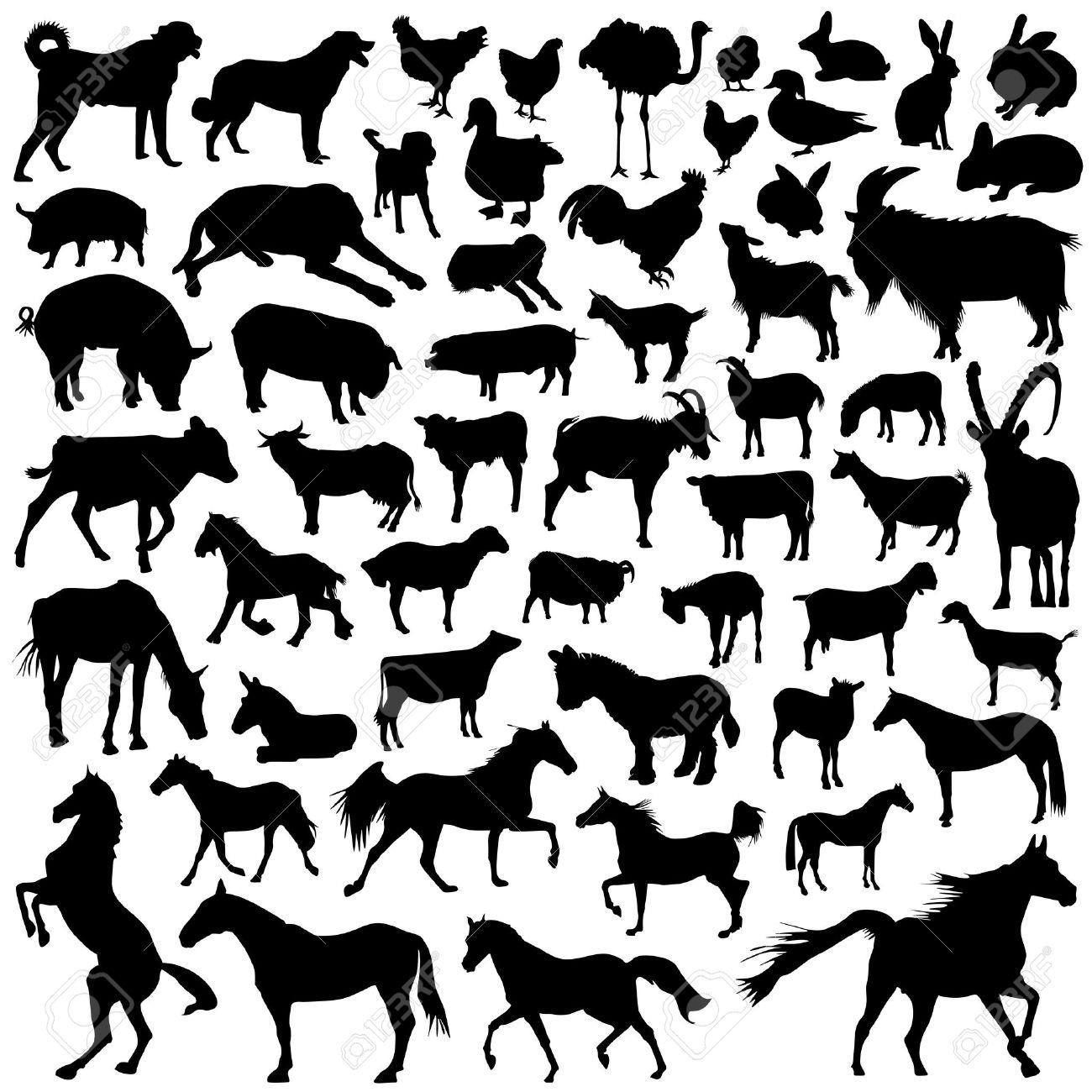collection of farm animal vector Stock Vector - 9592796