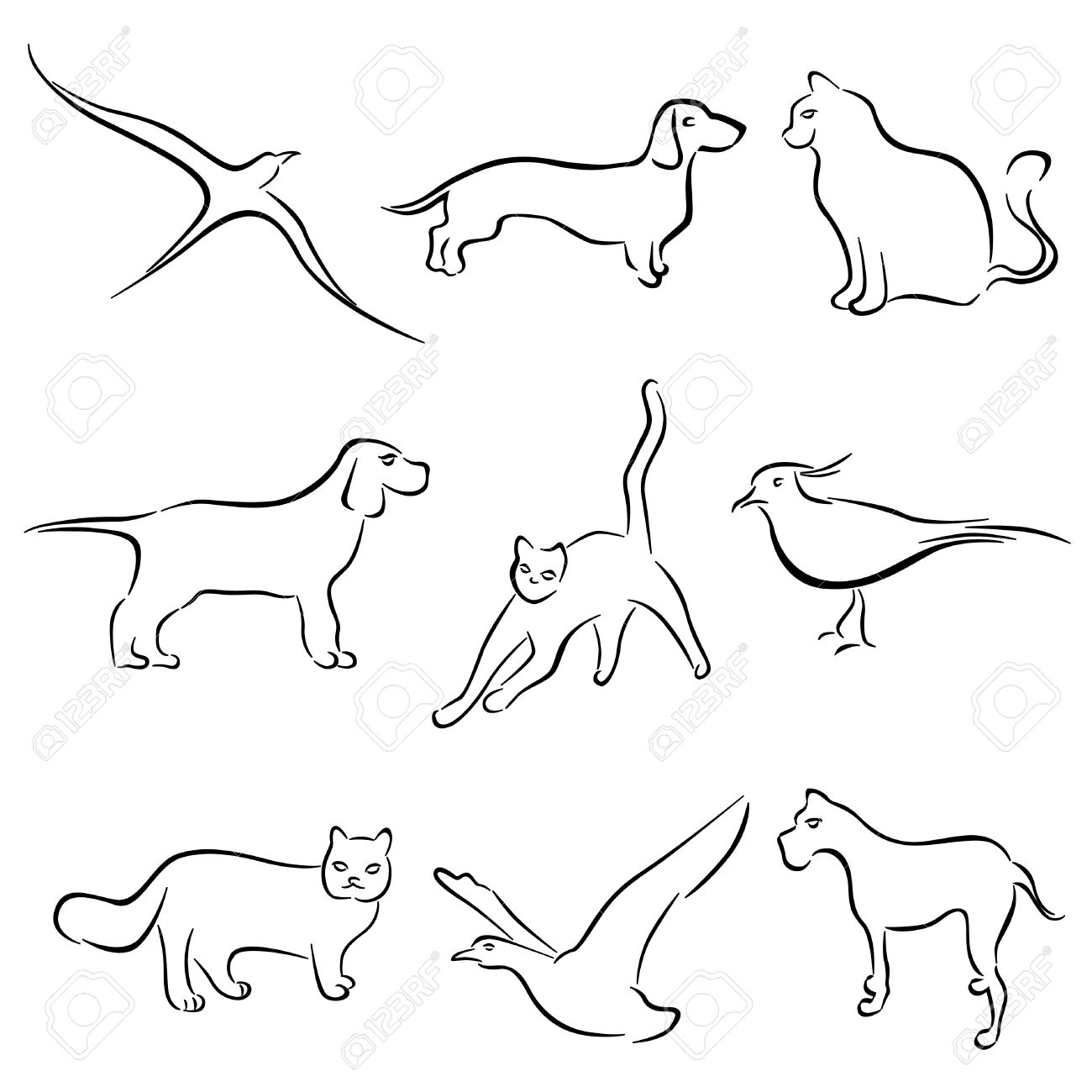 dog cat rabbit animal drawing vector royalty free cliparts