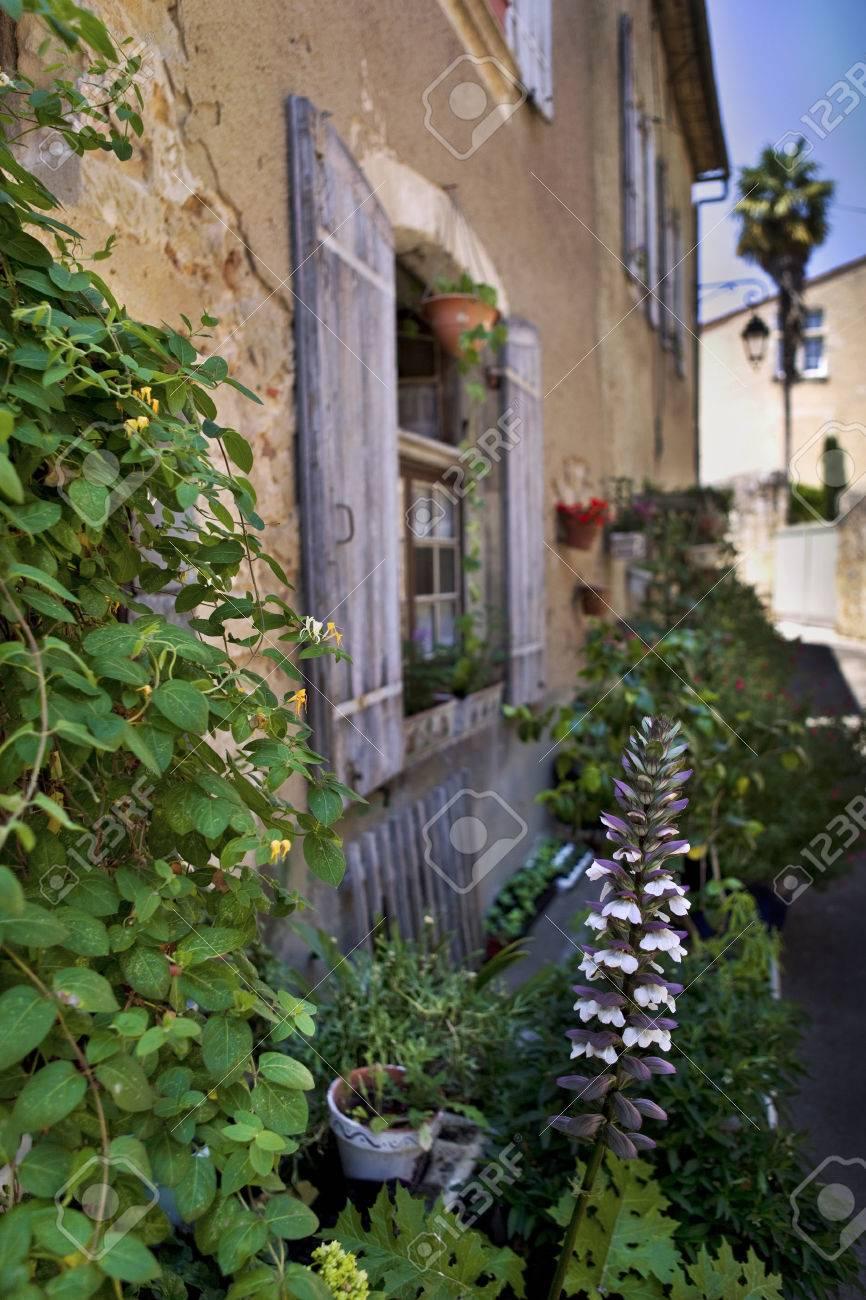 Pequeño Jardín Y Plantas En La Terraza De Una Casa Francesa