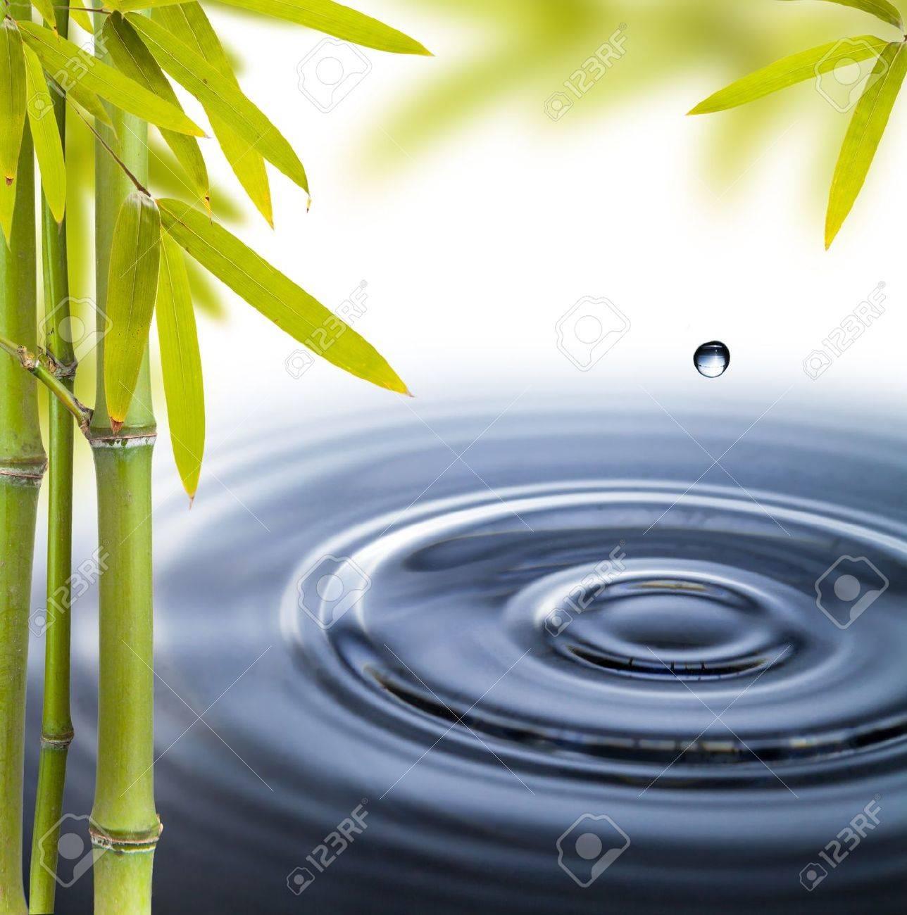 Spa still life with water circles Stock Photo - 18980930