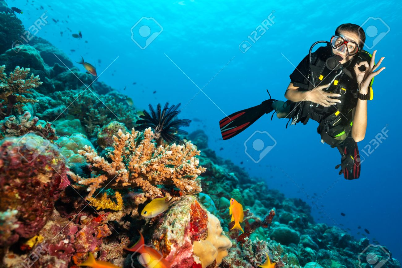 Female scuba diver showing ok sign, explore beautiful coral reef. Underwater photography in Indian ocean, Maldives - 53031425