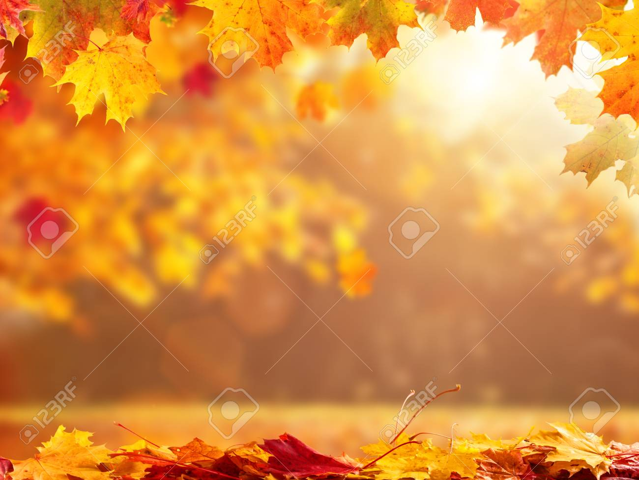 Schone Saisonale Abstrakte Herbst Hintergrund Mit Exemplar Und