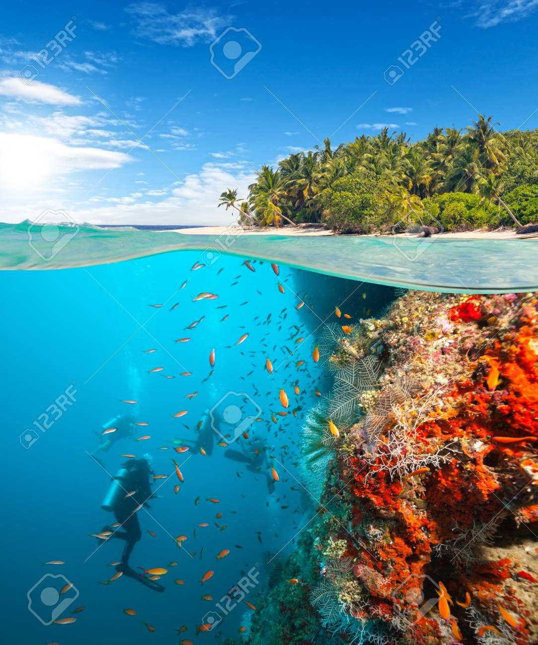 Group of scuba divers exploring coral reef. Underwater sports and tropical vacation template - 72123264