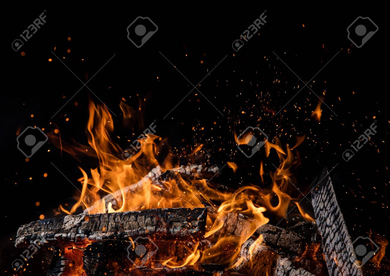 Burning wooden logs in fire, campfire isolated on black background - 109190798
