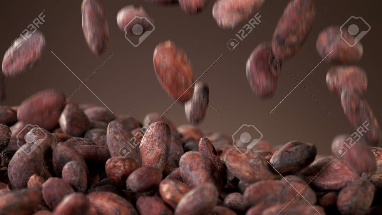 Pile of roasted cocoa beans, whole unpeeled pieces, free space for text. - 168111158