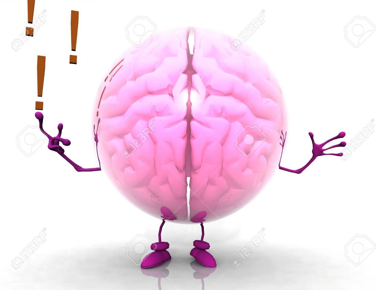 the brain Stock Photo - 11956834