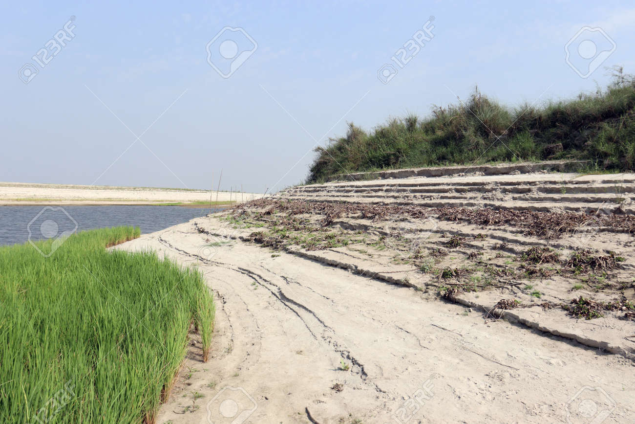 lake view with paddy firm and nature - 170535824
