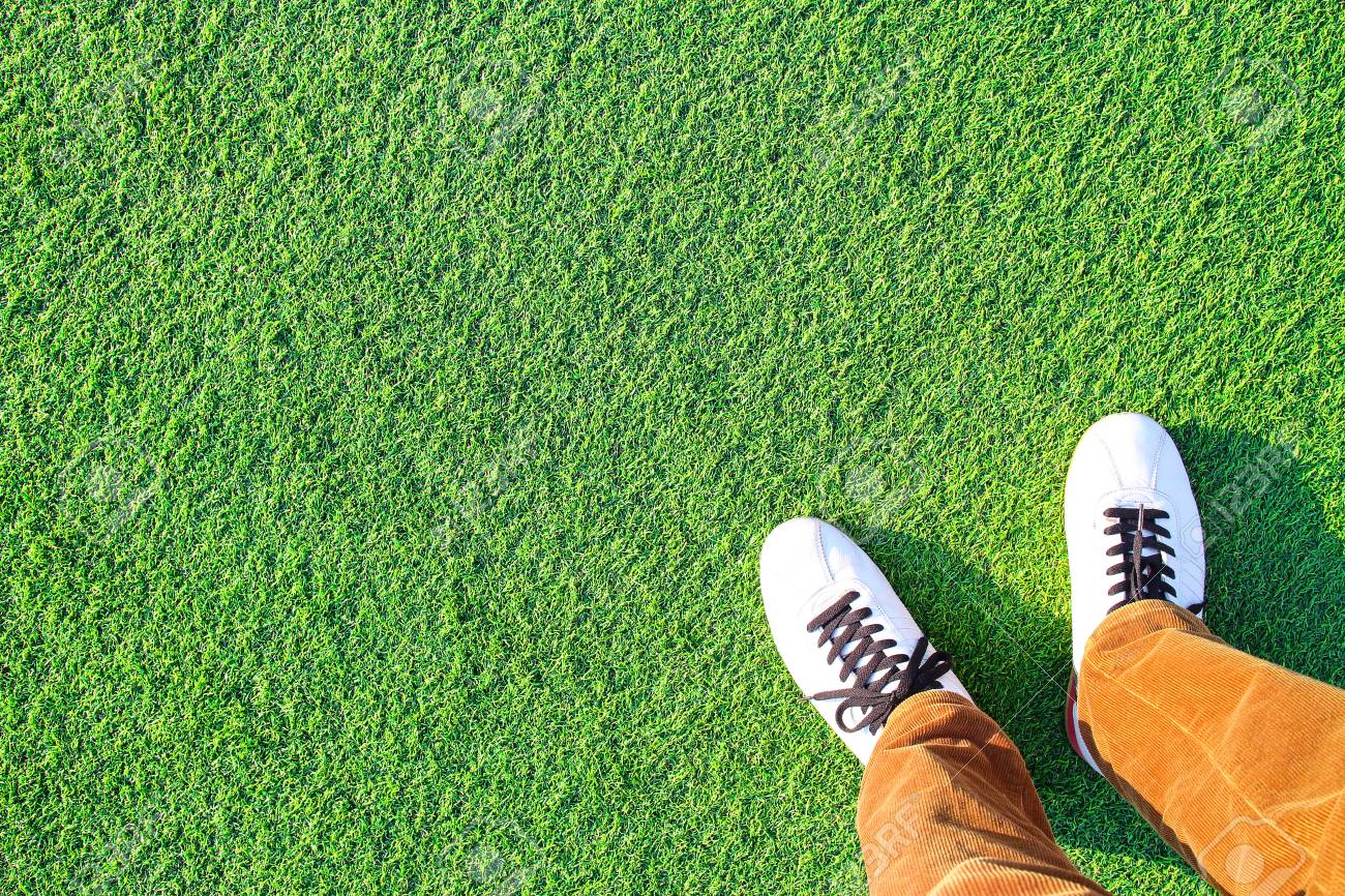 Artificial turf and Leg - 101557006