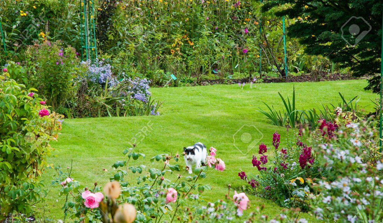 Claude Monets Garden In Giverny France Stock Photo Picture And